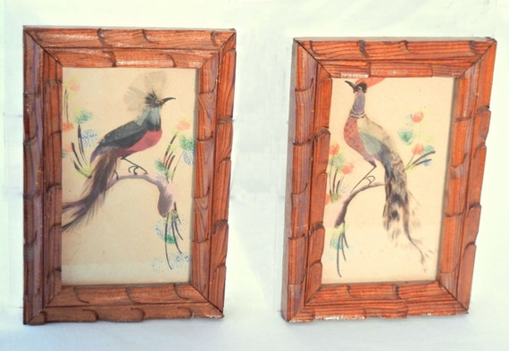 https://www.etsy.com/listing/168848267/two-framed-feather-birds-of-paradise-50s?ref=shop_home_active