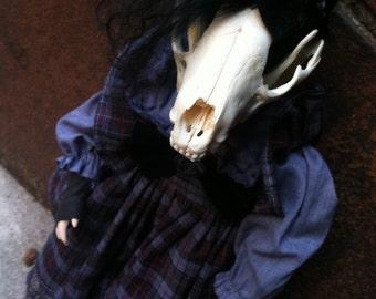 Kindertodt Oddity Doll: Kleine Lieselotte