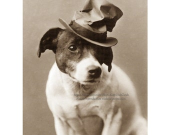 Goofy Dog Card - Jack Russell Terrier Wears Hat Sad Face - JRT