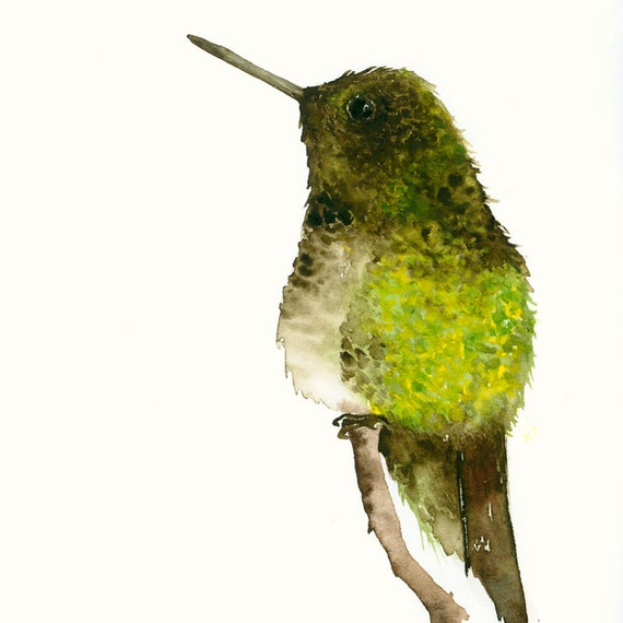 Watercolor Print Little Green and Brown Hummingbird