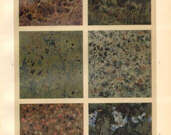 1903 Decorative Stones, Syenite, Granite, Serpentinite, Porphyry and Labradorite Original Antique Chromolithograph