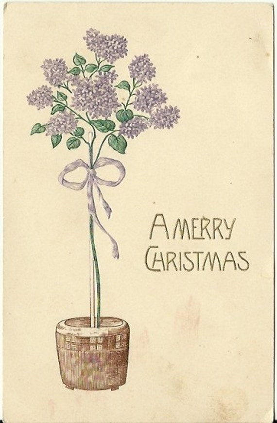 "Antique Postcard ""A Merry Christmas"" Rare Christmas Lilac Bush 1909"