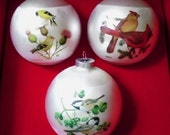Bird Christmas Ornaments Collection by Corning with Original Box 1976