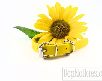 "Sunflower Yellow 3/4"" (19mm) Wide Beta Biothane Dog Collar - Leather Look and Feel - Stainless Steel or Solid Brass Hardware - Custom Collar"