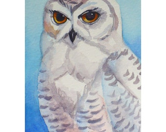 Snowy Owl Painting Original Watercolor Bird Wall Art by Janet Zeh 5x3.5 inches