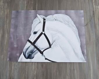 Oliver-Horse Portrait/Fine Art Print