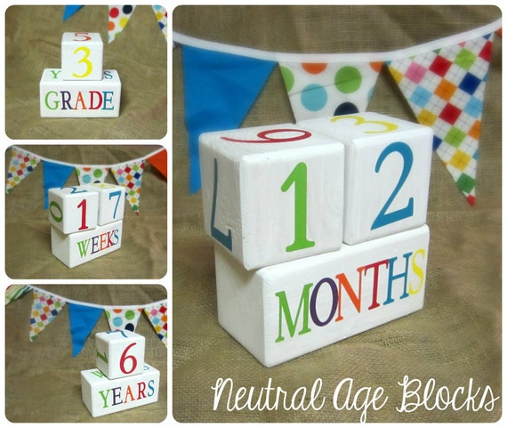 Child Baby Age Blocks Handmade Photo Prop Monthly Colors