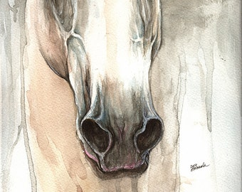 Framed original watercolour painting of a Grey horse