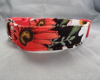 Bold Summer Flowers Dog Collar