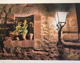 "Photo: Macetas, Cantabria (18"" x 12"" print) (front signature)"