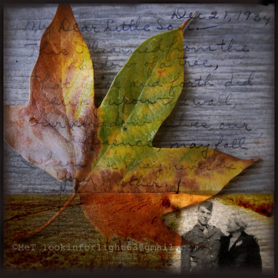 Vintage Photo Art | Old Poem art | I learned from a Shadow of a Tree | Old Photo Art | Leaf Art | Vintage Poem | Midwestern Photo Montage |