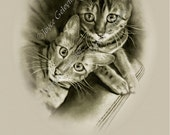 Art PRINT: Two Bengal Cats with Quote, Stroking a Tiger, Original Drawing, Fine Art, Free Shipping