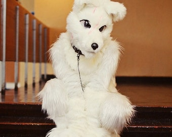 Hund fursuit kostüm cosplay ginga v erkauf