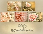 flower photo set, flower photography, nature photography, spring decor, gift for grandma, gift for mom, retro decor