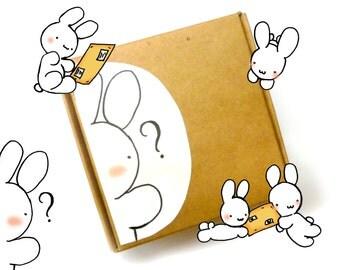 Kawaii mystery box – cute surprise