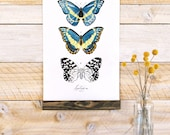 Lepidoptera Vol.2 - Mini wall hanging, wood trim and printed on textured cotton canvas. Vintage Science Posters