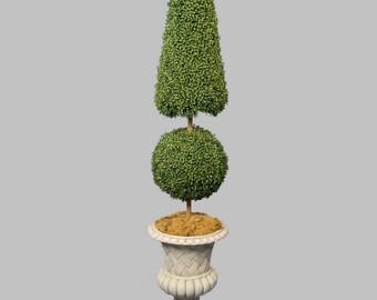 Topiary Tree Design 3 Vinyl Wall Decal