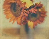 Orange Sunflower Daisies Polaroid Fine Art Photo 8x8 Art Print Textured  Inspired  Modern Wall Decor, Room Decor, Modern Home Decor