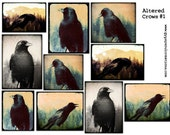 Altered Crow Photography - Altered Arts -  Digital Collage Sheet