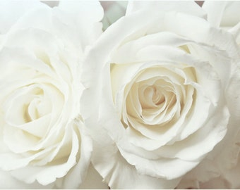 Unfold - Floral Photography Print, White Roses Art by Leigh Viner