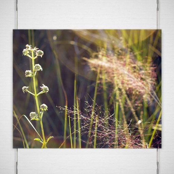Swamp Flowers Photography, Marsh Grass Photo, Dreamy Wall Art, Serene Home Decor