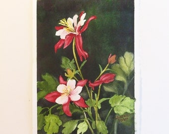 Original Watercolor Painting - Columbine Spring Flowers Floral Painting
