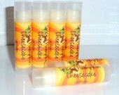 Spiced Pumpkin Cheesecake Lip Balm .15 Ounce Tube - Paraben Free Lip Balm