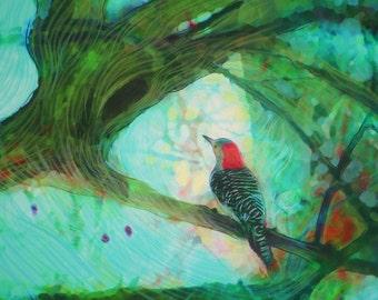 Perfect view, 16x20 inches, Art, photography, nature, bird art, Original, teal decor, 16x20, Gina Signore, bird art
