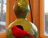 Green Gourd Bird House