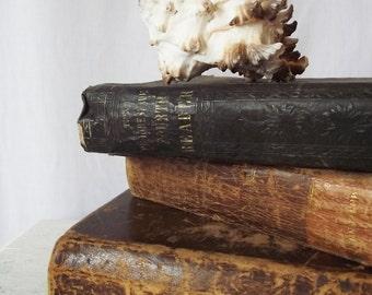 A View of the Expected Christian Millennium: Antique Leather Bound 1820s Book - Josiah Priest - Millennium - Antiquarian Mormon