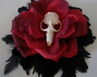 Skull, Muskrat, skull hat, feather, feather hat,red rose, rose hat,skull feather,black feather hat, goth wedding