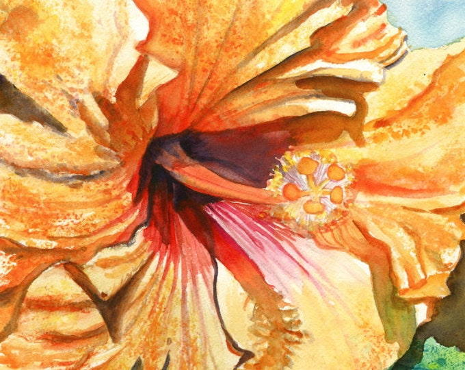 Tropical Hibiscus 3 8x10 print from Kauai Hawaii yellow orange