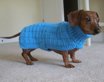 Sweater Pattern for Mini Dachshunds, Doxie, Dachshund, Knitted Dog Sweater, Small Dog, Blue Squares