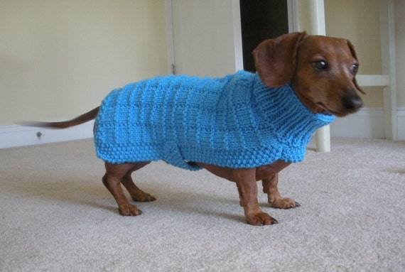 Knitting Patterns For Dachshund Dog Sweaters : Sweater Pattern for Mini Dachshunds Doxie Dachshund Knitted