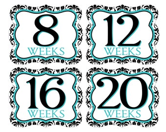 12 Weekly Pregnancy Mama-to-be Maternity Waterproof Glossy Die-cut Stickers  - Monthly stickers available - Design W002-04