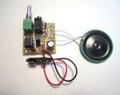 Assembled Kit: Portable MP3 Amp w/ Speaker & 10X Gain