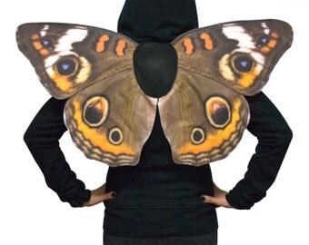 Ready to Ship - Realistic Buckeye Butterfly Costume Wings, Junonia Coenia, Common Buckeye