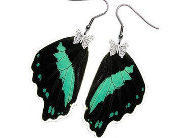 Real Butterfly Wing Earrings (Nireus Hindwing - E084)