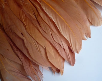 GOOSE FEATHER FRINGE ,  Amber, Butterscotch /  463