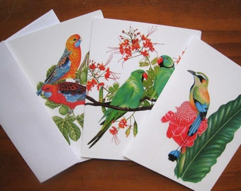 Tropical Bird Cards