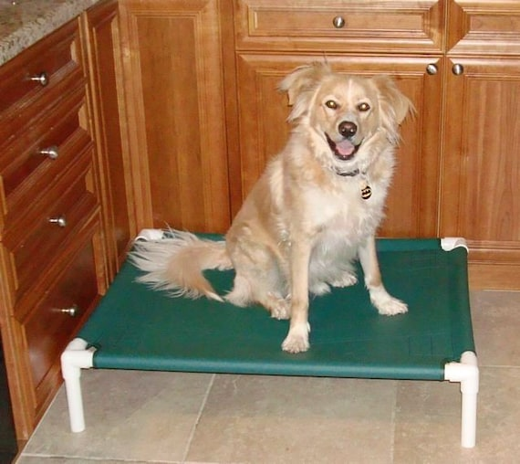 Raised Portable Dog Cot Outside Inside Pet Dog Bed, PVC Pipe Dog Cot, Cat  Bed 13 Canvas Colors 28x36x8 Small To Medium Dogs Up To 80 Pounds.