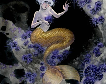 Sea Urchin Mermaid - 8x10 print