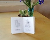 Cacti & Succulents Mini Book (2nd Edition)