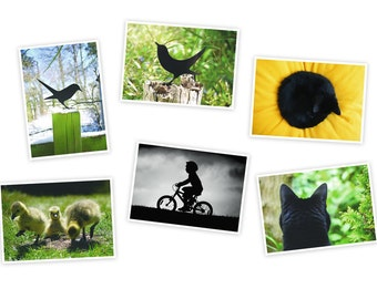 Postcards, Greeting Card