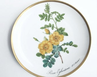 Floral porcelain china plate, Flower collectible plate, Collectible wall hanging, Shabby chic home decor, Cottage chic decor, Kitchen decor