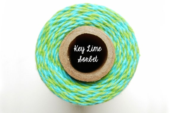 SALE - NEW Aqua and Lime Green Bakers Twine by Timeless Twine - Key Lime Sorbet