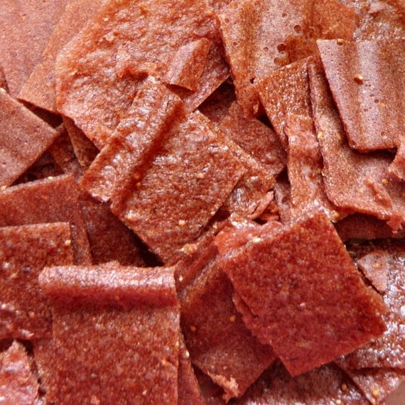 Strawberry Ginger Fruit Leather Bites - 2 oz. - GREAT for you AND your dog