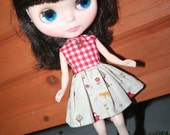Red Gingham and Little Red Riding Hood Party Dress - Blythe Dress