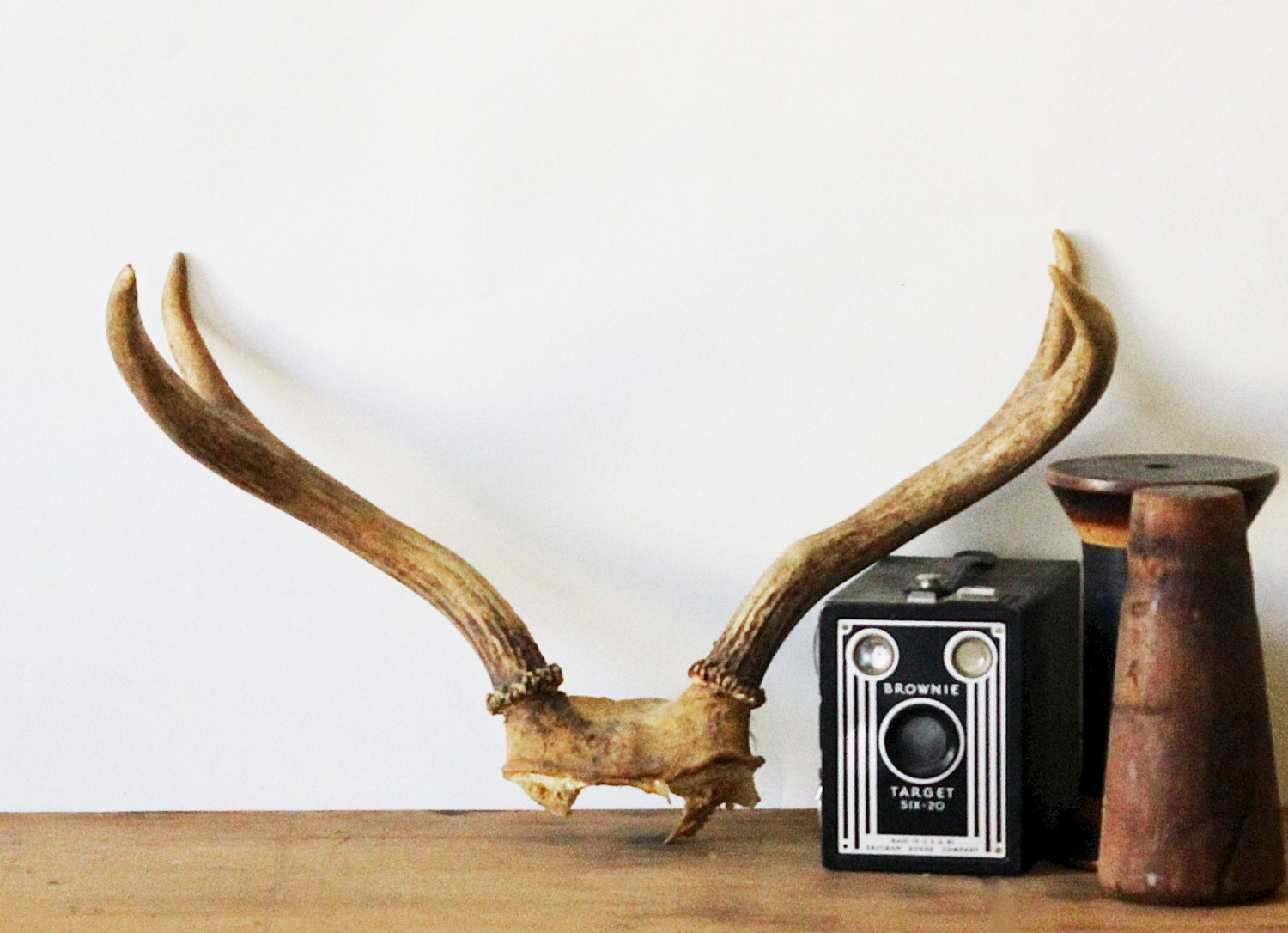 Natural home decor vintage antlers home decor taxidermy for Antler decorations for home