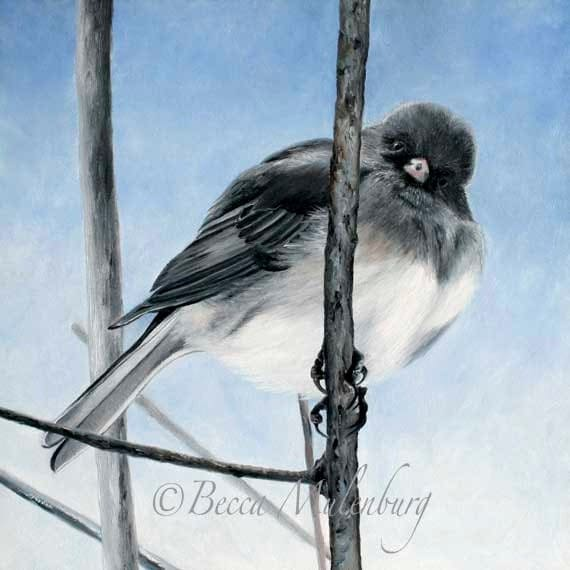 bird art painting original oil junco nature wildlife blue